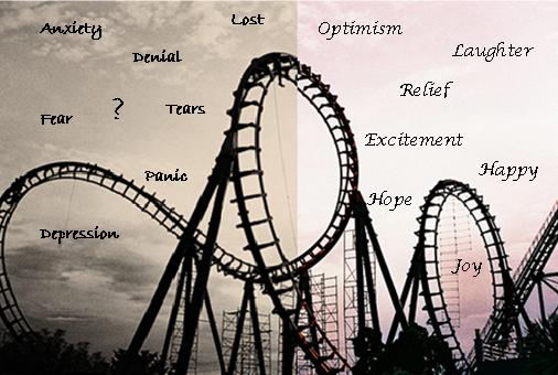 Life is like a roller coaster ride essay writer